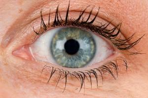 Fishers Optometrist looking at eye